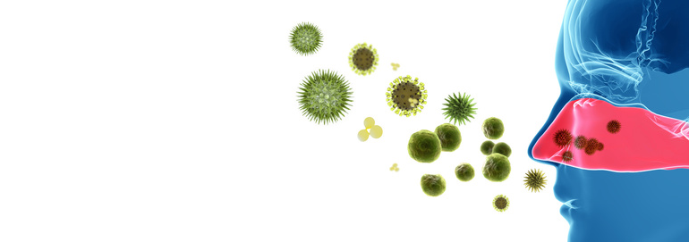 bakterie nosa